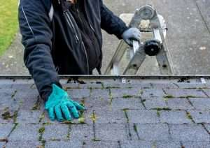 Should roofs be cleaned